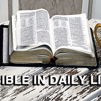Bible in Daily Life - Wed Mornings Starbucks Griswold