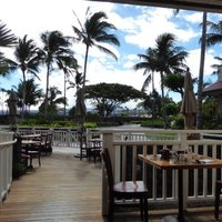 Daylight Mind (Waikoloa) Devotions