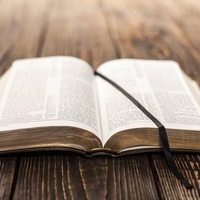 Stories of the Old Testement Bible Study