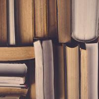 Women's Daytime Book Study