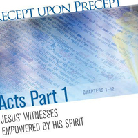 Women's Precepts Study: Acts Pt. 1 (Evening)