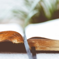 Philippians and Colossians Bible Study