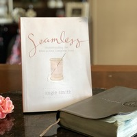 Seamless- understanding the Bible as one complete story