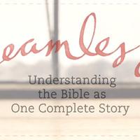 """Wednesday AM Women's Bible Study - """"Seamless"""""""