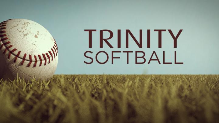 Medium softball cover