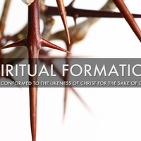 Discipleship: Formation (D3)